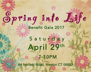 Spring Into Life Benefit Gala 2017